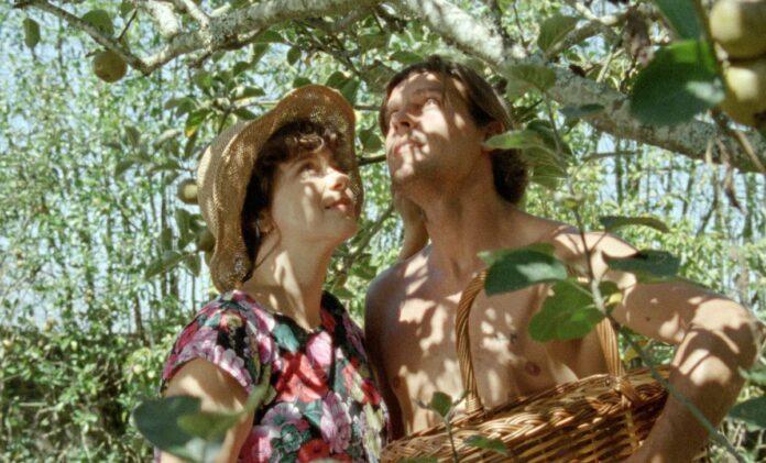 Photo du film Journal de tuoa de